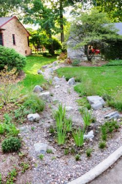 Rain gardens, natural looking, Wauwatosa WI, native plants