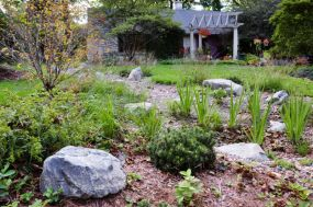 Character boulders, native plants, evergreens, Wauwatosa WI