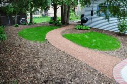 No-Mow, lawn, sustainable, Shorewood WI