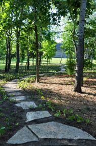 Lannon stone stepper pathway with native plants