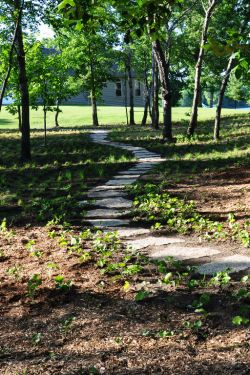 Naturalized woodland pathway using Lannon stone