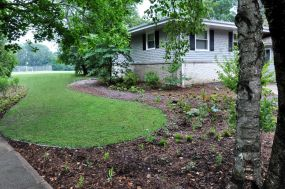 Reduced front lawn and rain garden installed