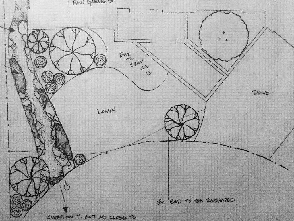 Hand Drawn, 2 D Landscape Design Rain Garden
