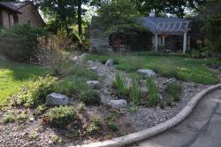 Rain garden and dry riverbed including boulders and decorative stone. Surrounded by native plants