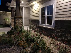Native Plantings Front Garden Beds Nitetime
