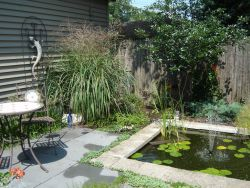 Cozy Pond Small Yard Large Impact