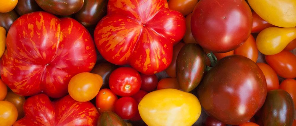 heirloom_tomatos
